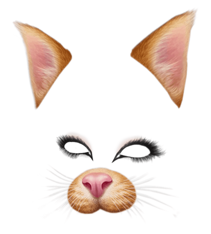 snapchat filter brown cat