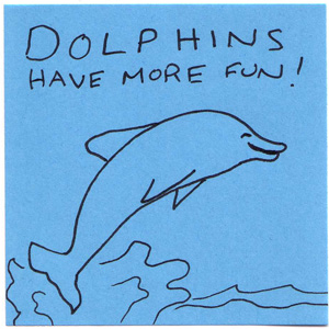 dolphins have more fun!