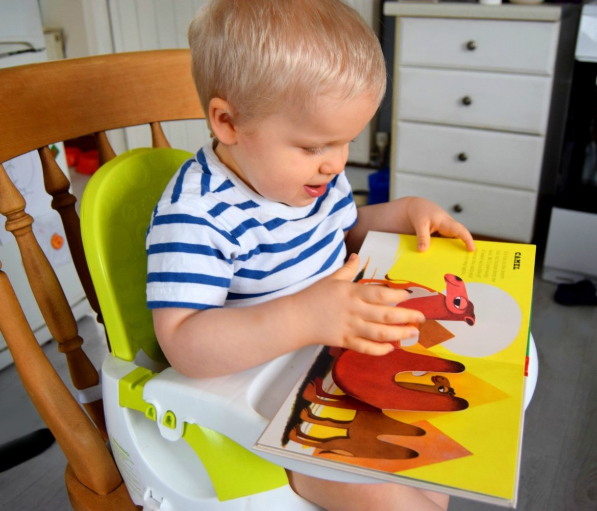 little one reading a pop up book