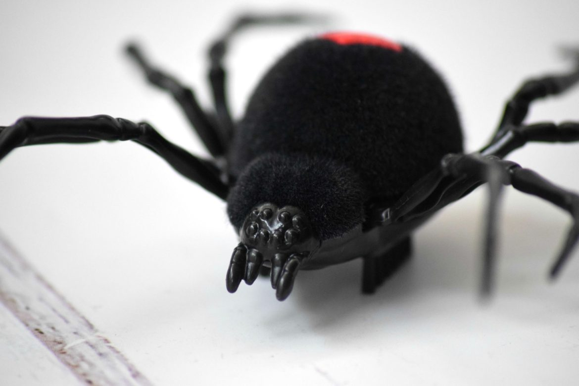 A close up of the Zuru Robo Alive toy Spider's face.