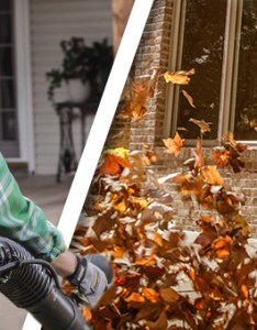 How to select the right stihl blower also choose perfect leaf for you usa rh stihlusa
