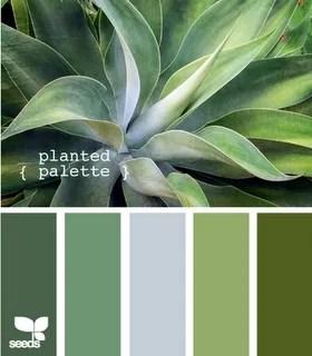Kleur  Interieur  De kleur groen in jouw interieur