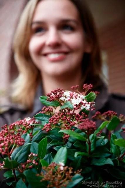 Buitenleven | Herfst tuin inspiratie met de tuinplanten van de maand oktober #woonblog www.stijlvolstyling.com