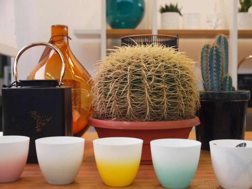Interieur   Planten weer hip door woontrend 2015 - Botanisch wonen - Door: Woonblog www.stijlvolstyling.com