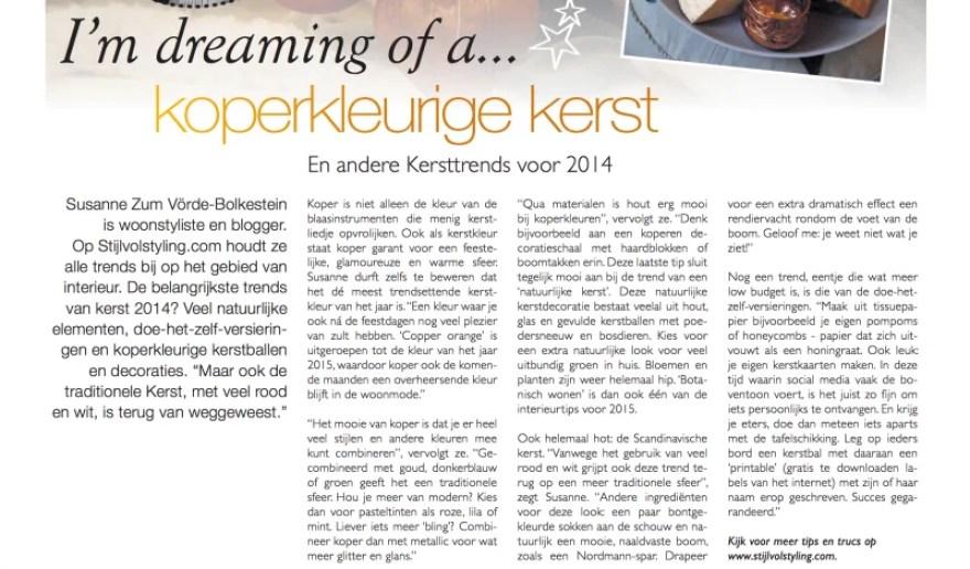 Stijlvol Styling - interview in Metro krant december 2014