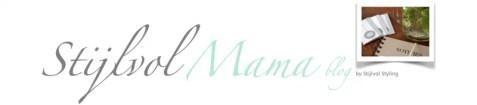 Stijlvol Mama blog header