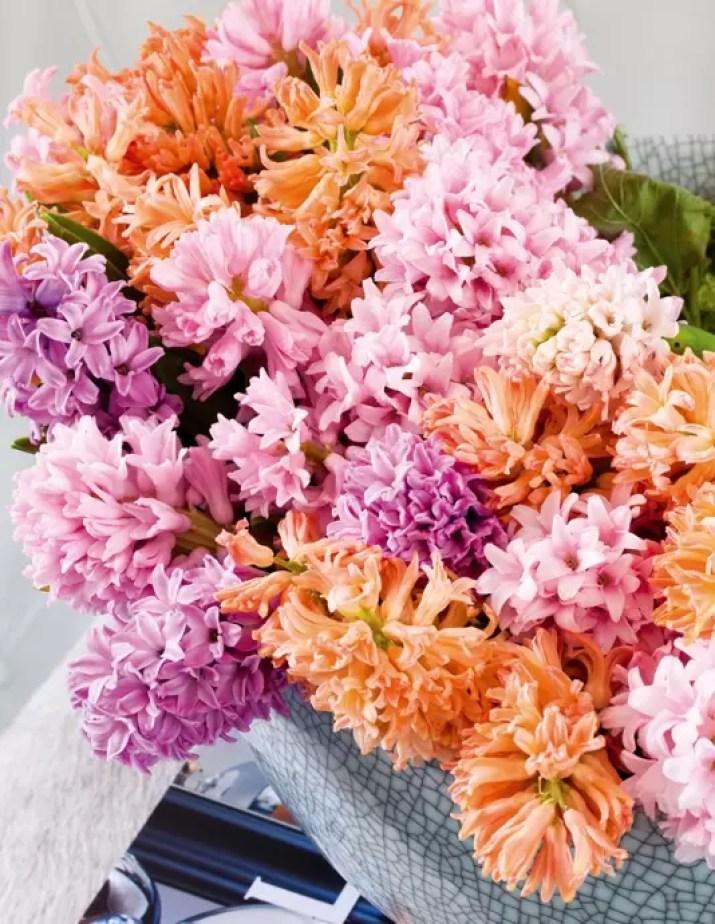 Alles over lentebloem de Hyacint - Stijlvol Styling woonblog www.stijlvolstyling.com
