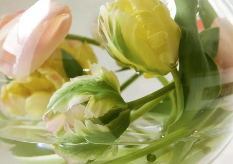 DIY | 3x anders geschikt - 'Creatief met tulpen'