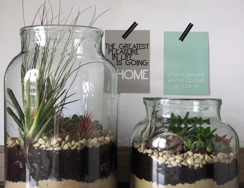 DIY  Woontrend Maak je eigen mini tuin  Stijlvol