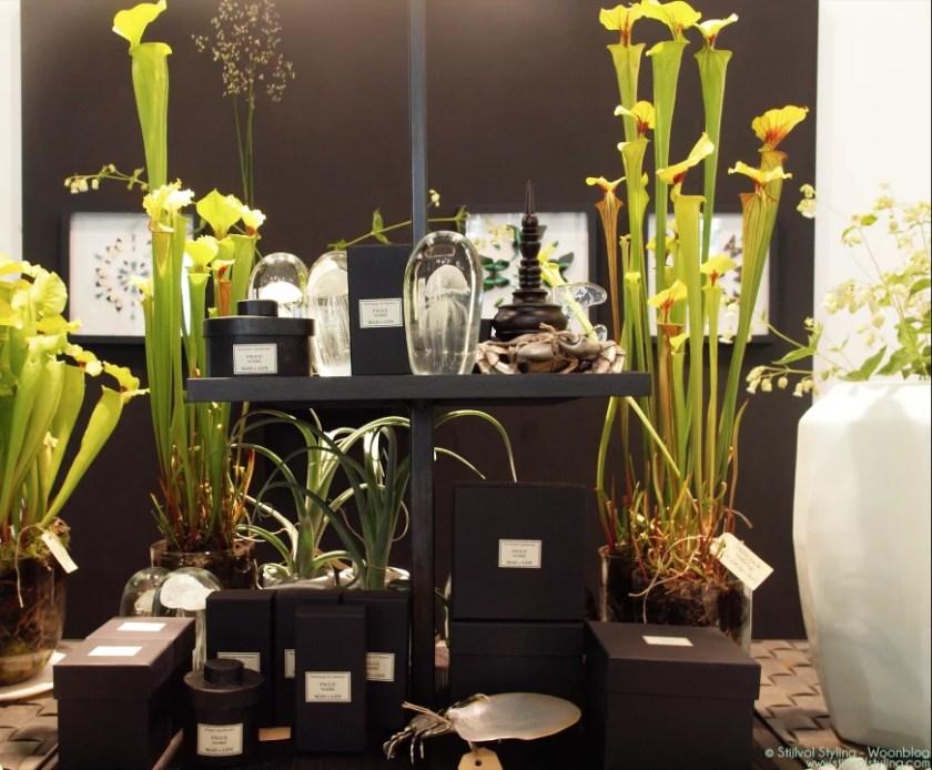 Er-op-uit  The Wunderkammer presenteert Exotisme.- Galerie en interieur, planten en bloemenwinkel in Amsterdam - fotoreportage door Stijlvol Styling woonblog - www.stijlvolstyling.com