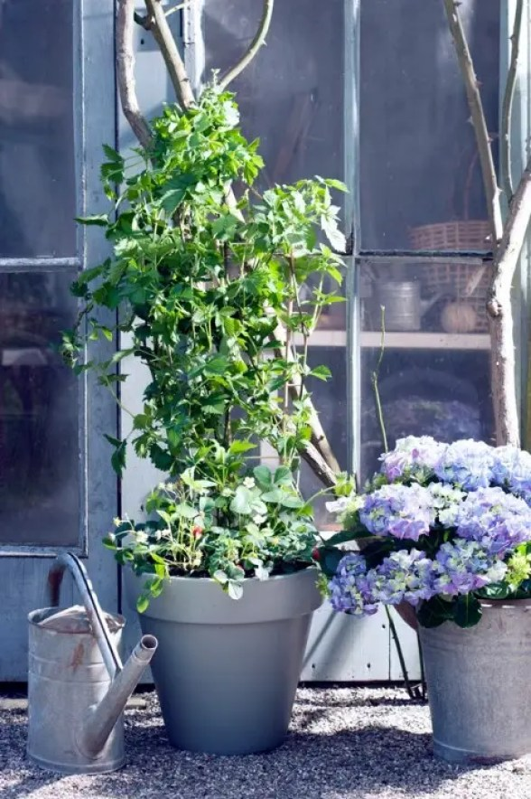 Buitenleven | Comfortabel en luxe in eigen natuurtuin - Stijlvol Styling woonblog- www.stijjlvolstyling.com