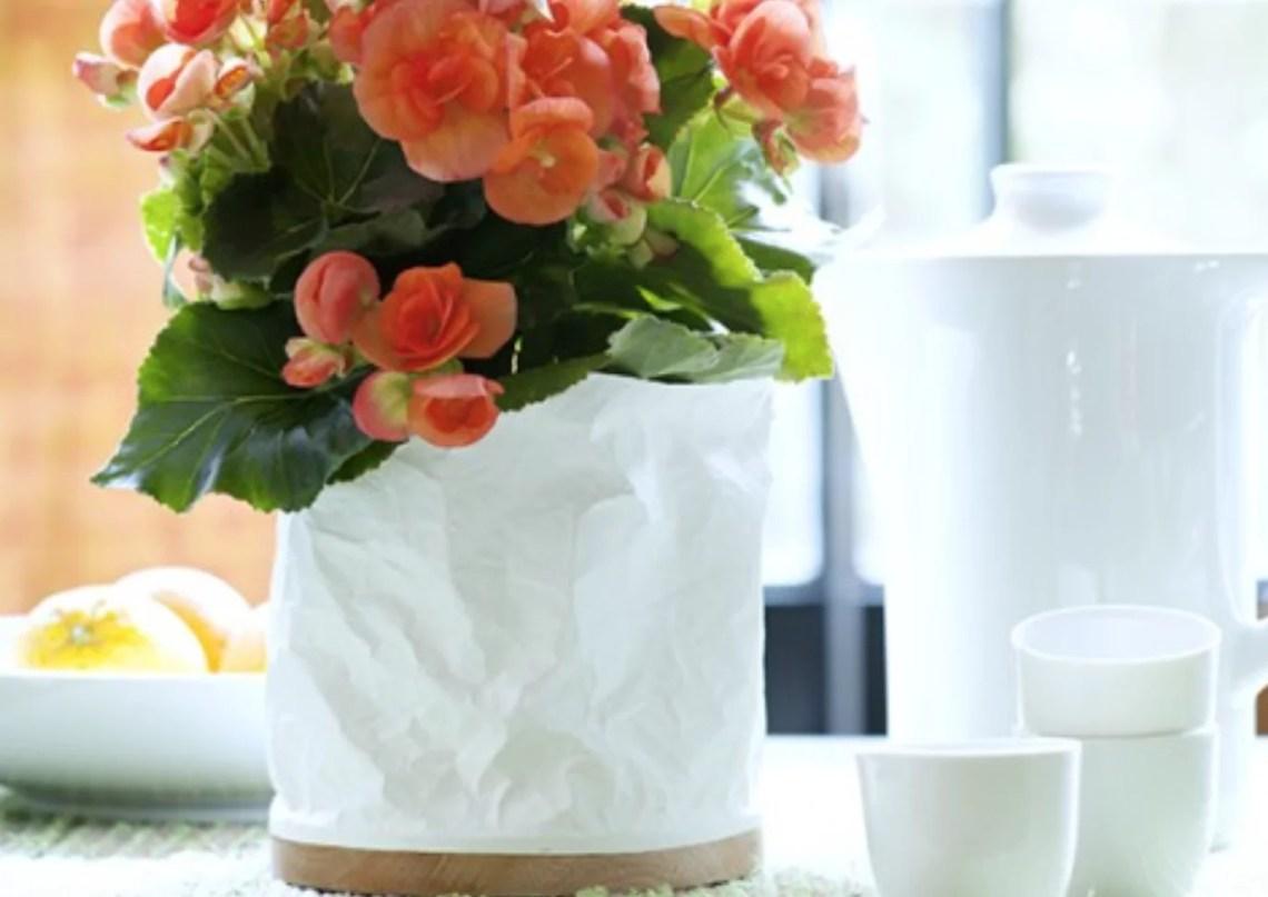 Groen wonen | Begonia = Woonplant vd Maand oktober - Woonblog StijlvolStyling.com