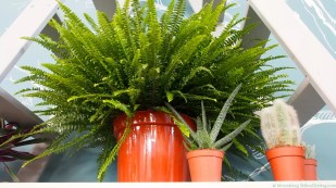 Groen wonen | Interieurtrend fris en energiek met zuiver groen - Woonblog StijlvolStyling.com