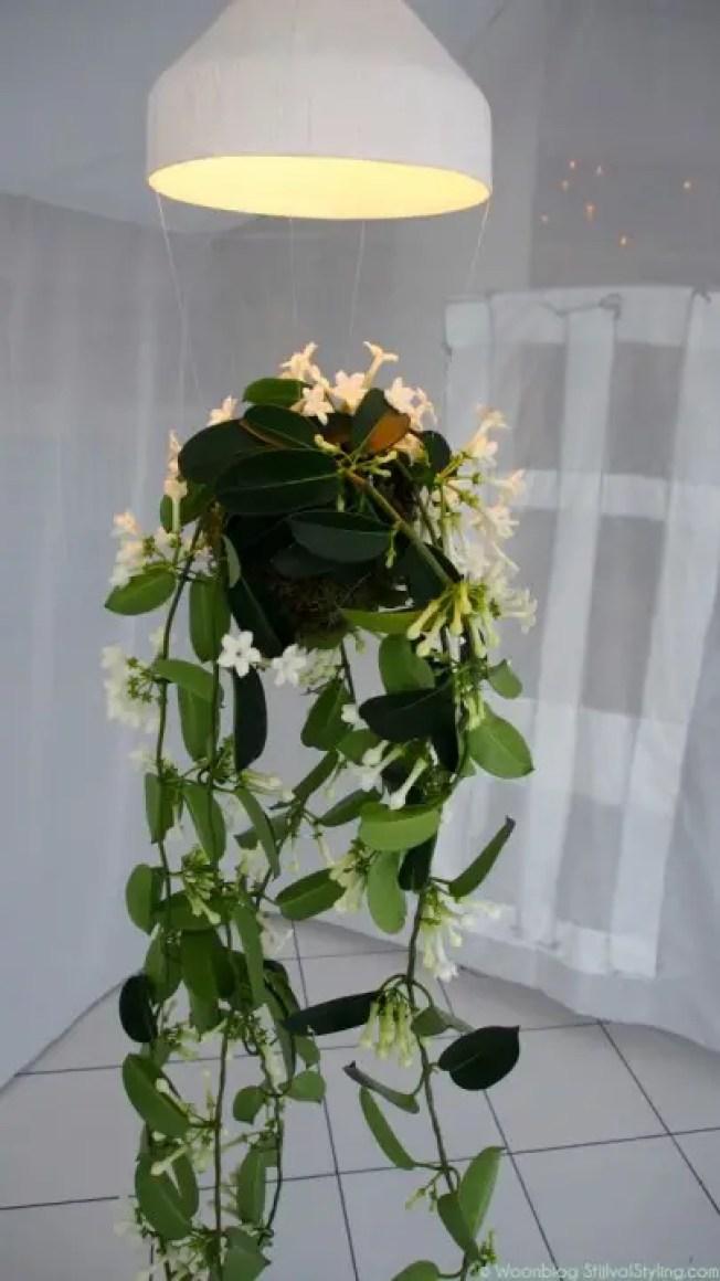 Groen wonen | Hangend groen - Woonblog StijlvolStyling.com