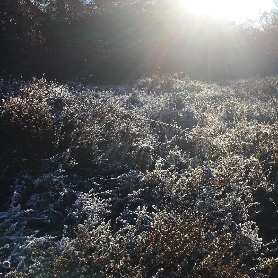 Wintertuin - StijlvolStyling.com