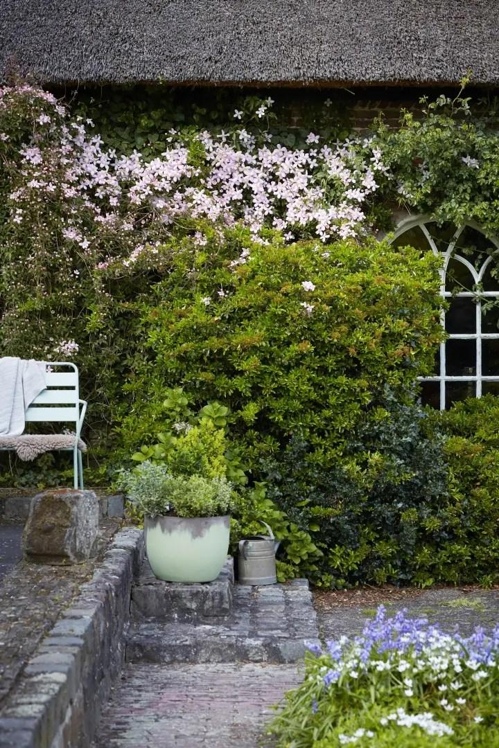 Buitenleven | Clematis = Kleurrijke klimmer - Woonblog StijlvolStyling.com