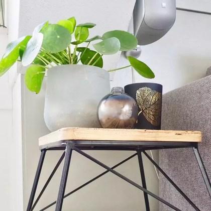 Groen Wonen | Woonfavoriet! Pilea peperomiodes (Pannenkoekenplant) - woonblog StijlvolStyling.com