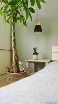 Groen wonen | Waterworks zorgt voor jouw planten - Woonblog StijlvolStyling.com
