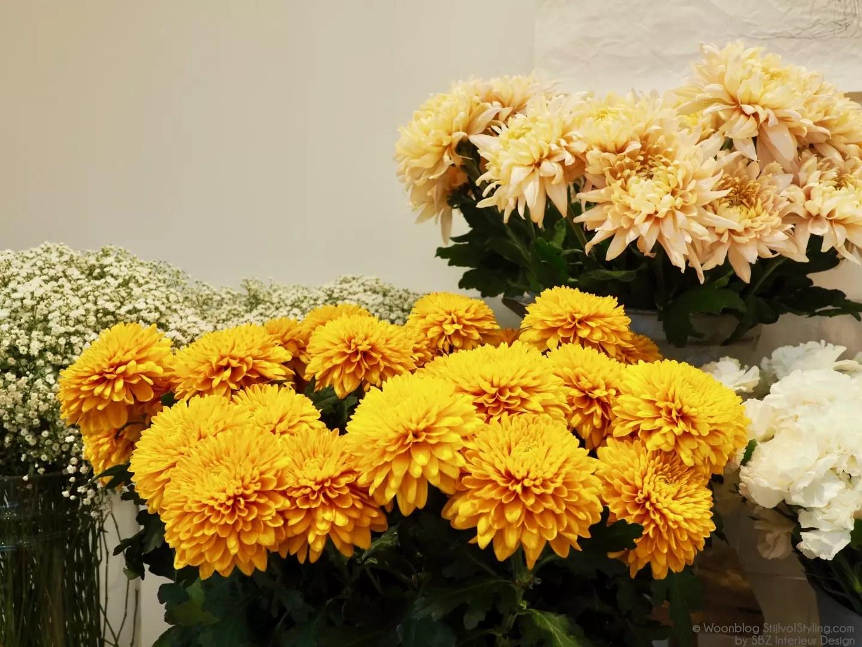 Groen wonen   'In the mood for love' met deze 5 bloemen - Lifestyle- & woonblog StijlvolStyling.com