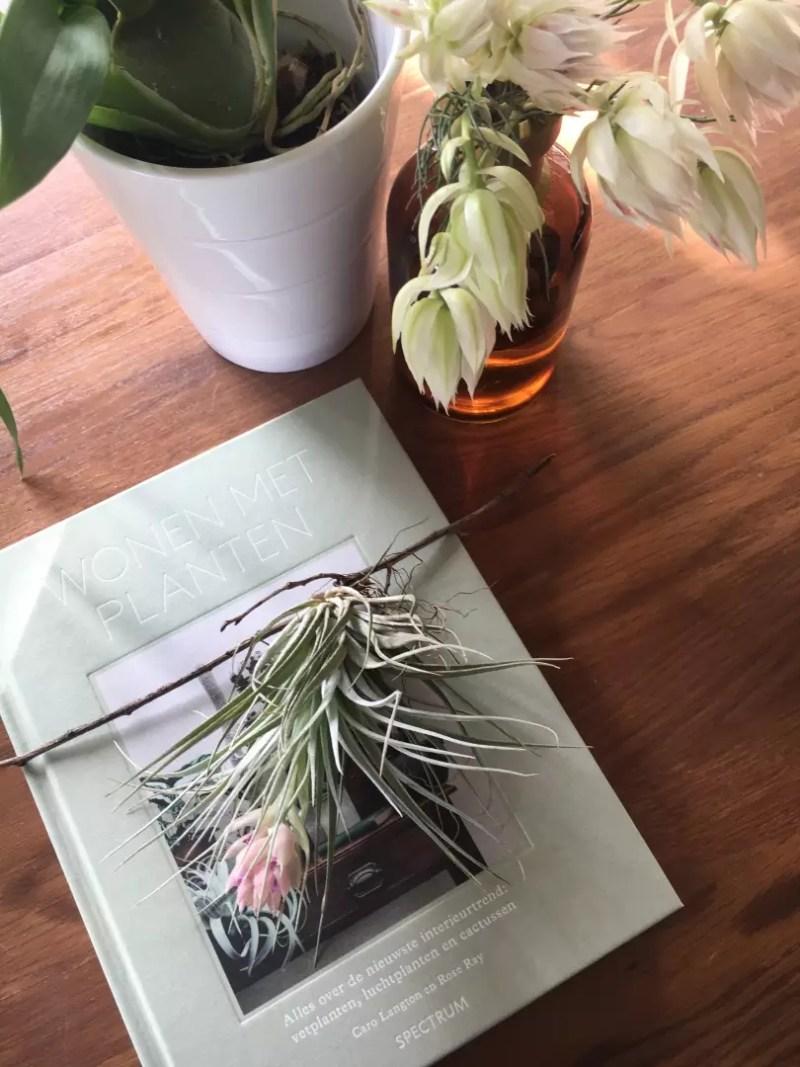 Interieur | Wonen met planten - boek review | Woonblog StijlvolStyling.com