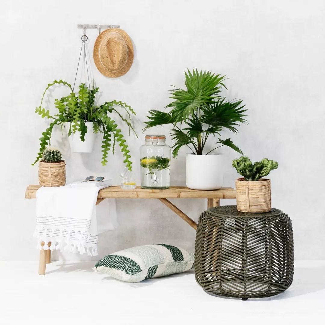 Tuin inspiratie de 3 tuintrends tropisch industrieel for Tuin inspiratie modern