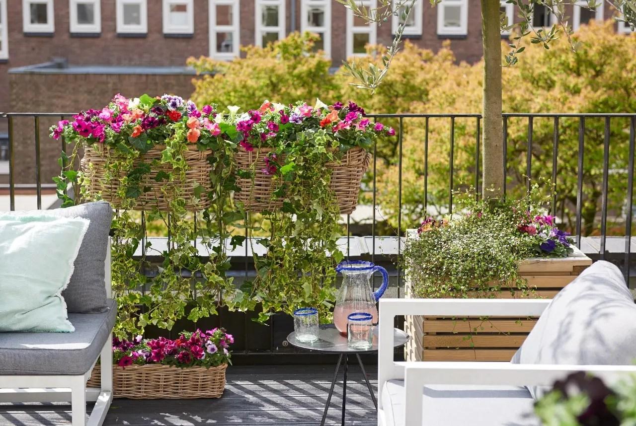 Tuin, Tuin blog, tuin inrichten, tuin inspiratie, Tuin tips, Tuinieren, Tuinblog, Terras, Terras inspiratie, buitenleven, buitenleven blog, terras inspiratie, terras inrichten, terras, balkon, tuinplanten
