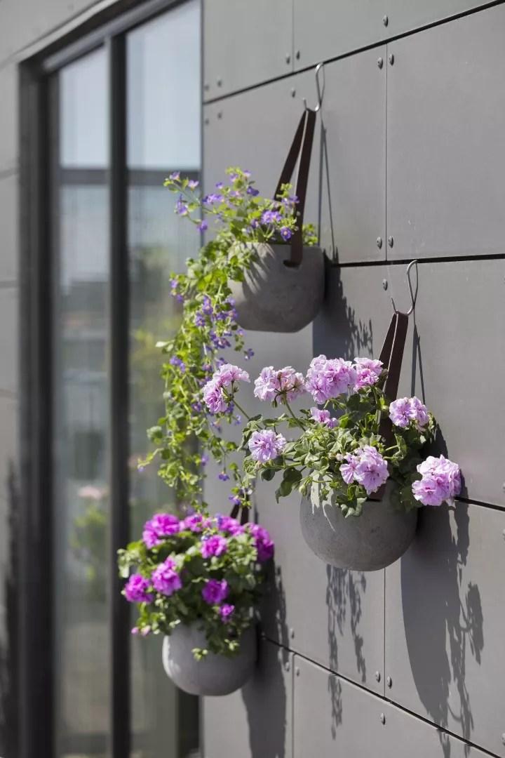 Tuin inspiratie | Geraniums: verrassend veelzijdig - woonblog StijlvolStyling.com - Fotocredit: Pelargonium for Europe (PfE)