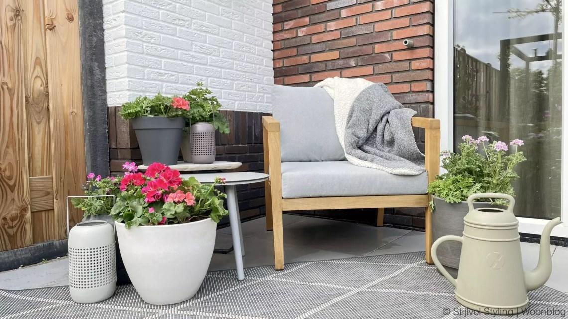 Tuin inspiratie | Geranium vol kleur en geur -StijlvolStyling.com