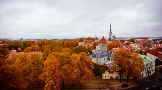 Tallinn - IMG_3017