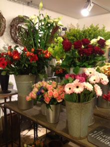 Willkommen  Stilblte und Blumen Derichs Baesweiler