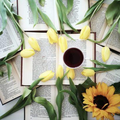 trova l'ispirazione sui libri da leggere con stile libri