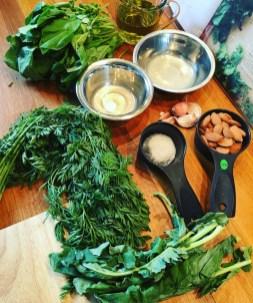Zutaten für fermentiertes Pesto aus Karotten-, Radieschen- und Kohlrabigrün
