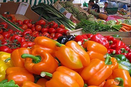 Food markets in Paris by neighborhood