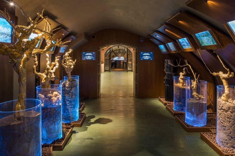 Cave du Louvre- Wine tasting in Paris