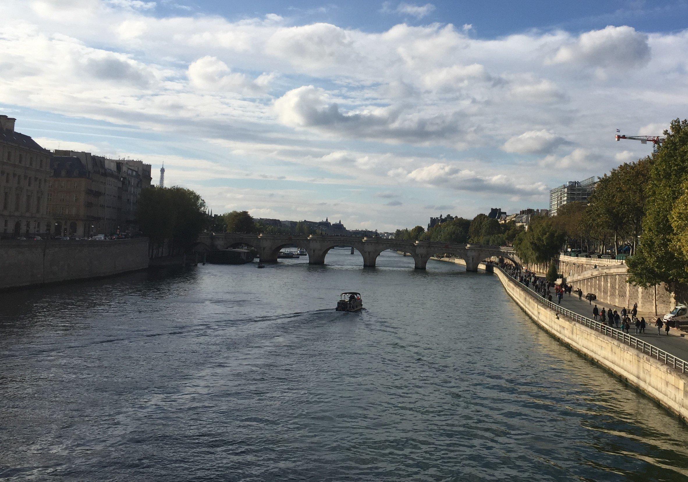 Pont Neuf & Seine River