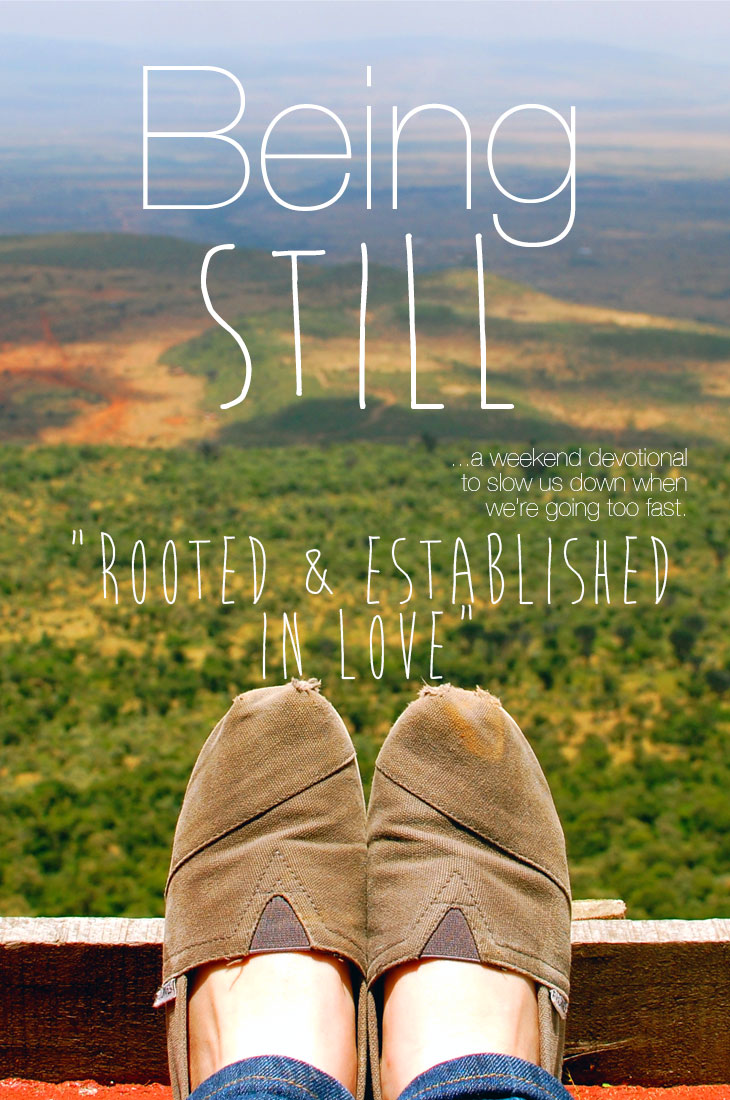 Being Still | Rooted & Established in Love