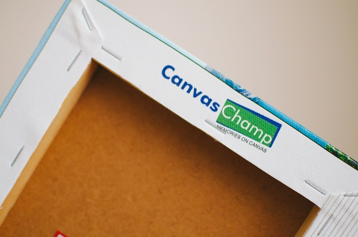 Canvas Champ Review by lifestyle blogger Still Being Molly