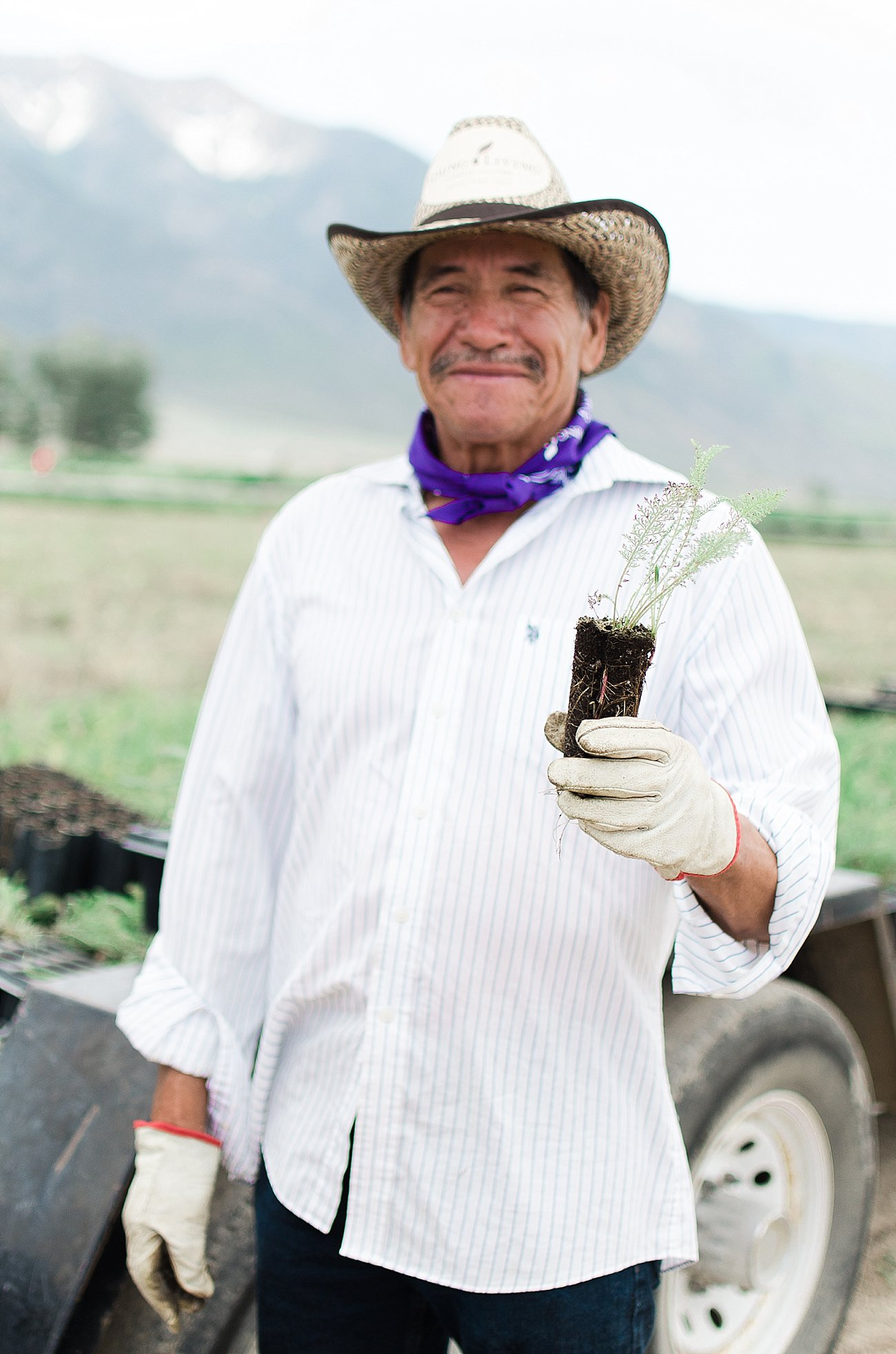 Young Living Lavender Farm, Mona, Utah (45)