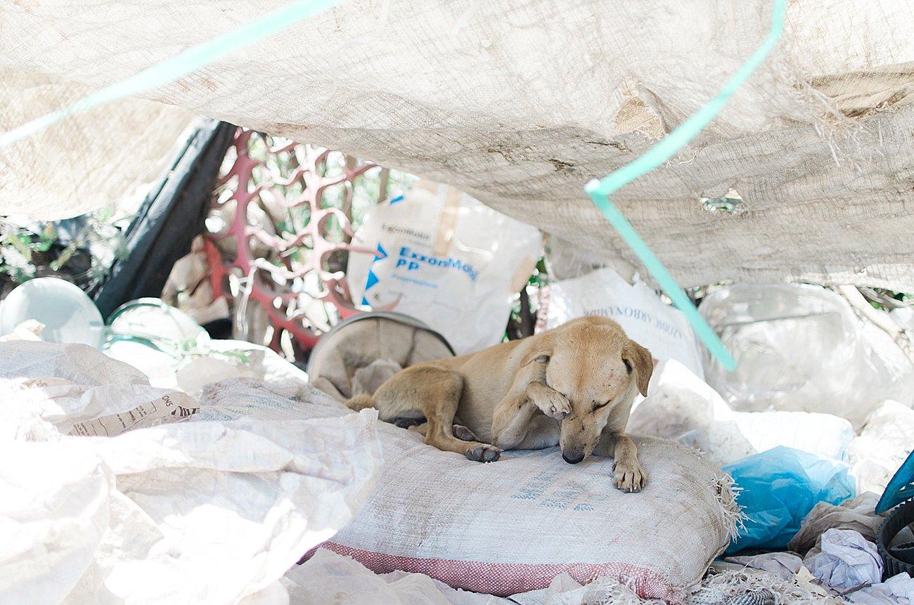 Nairobi, Kenya landfill - January 2017 (8)