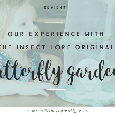 """Growing Butterflies at Home"" – Insect Lore Original Butterfly Garden Review"