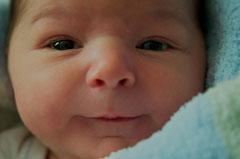 Zufriedenes, aufmerksames Baby