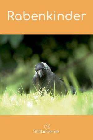 Eine Krähe auf dem Rasen