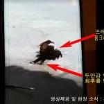 [시사] 충격…압록강 얼음 위에서 죽음을 맞는 북동포 영상, SNS 일파만파