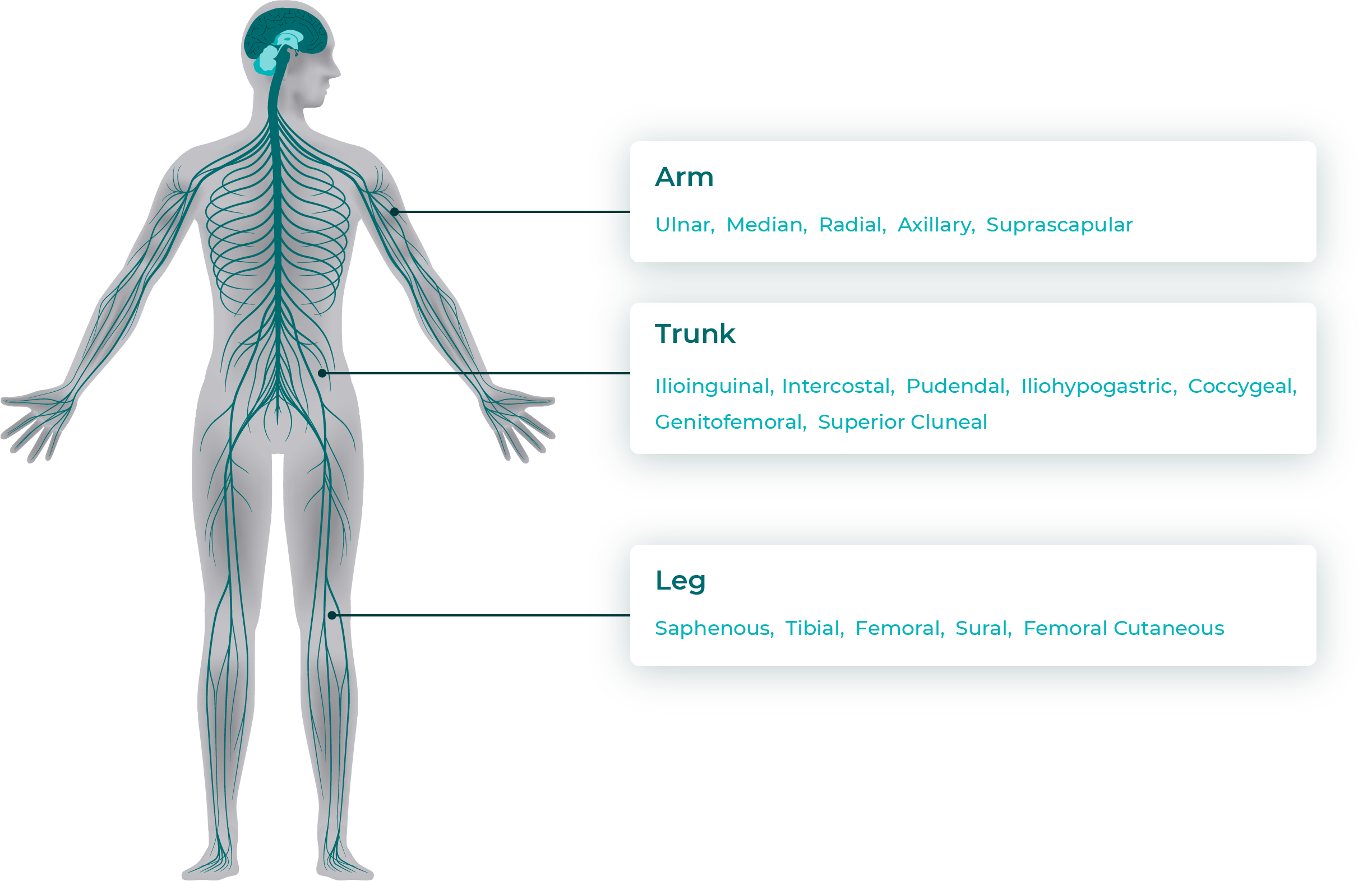 Procedure - StimRouter for Chronic Pain