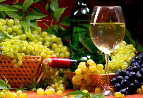 Producerea vinului