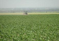 Viitorul agriculturii romaneşti