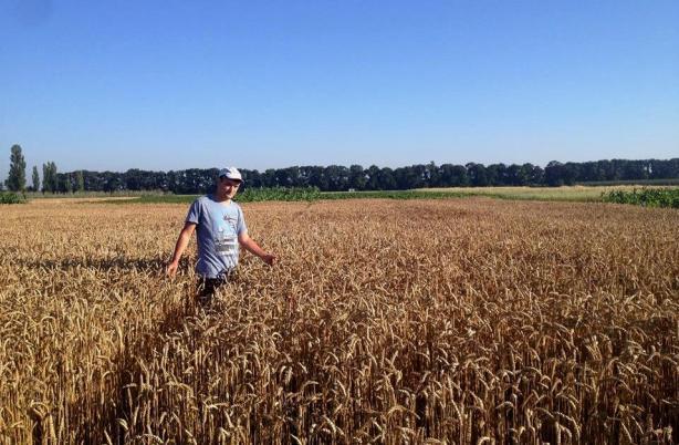 fertilizare-culturi-agricole-microelemente