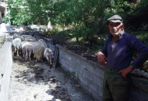 fermieri grecia