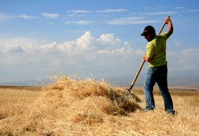 top-tineri-fermieri-romania