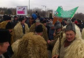 protest ciobani2